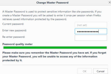 Password Manager Setup