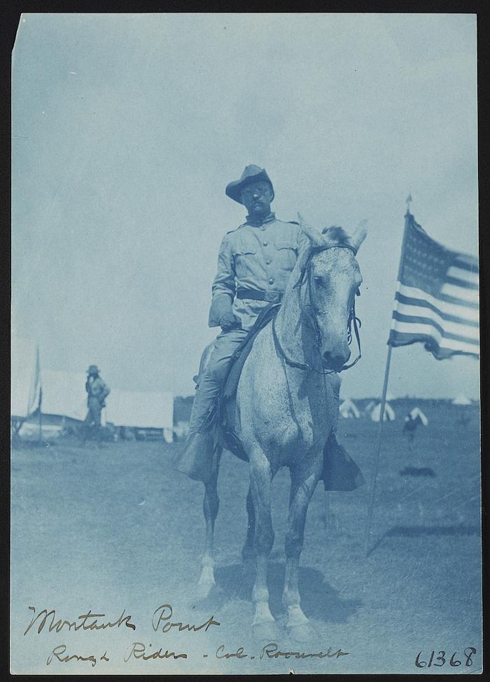 Blue monochrome image of Teddy Roosevelt.